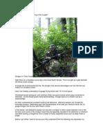 Forest Tracker Shotgun