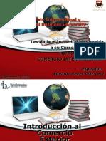 Introduccion Al Comercio Exterior Comercio Electronico
