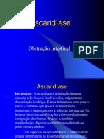 Ascariatuali2