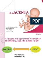 Expo Placenta