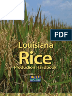 Rice Production Handbook