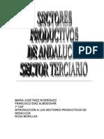 SECTORES PRODUCTIVOS DE ANDALUCÍA nuevo 3eva