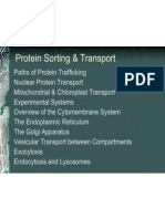 Protein Sorting and Transport