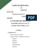 Lucrare de Diploma IMA