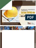 Feb Per Sensibilizacion Implementacion y Aplicacion de La Ley 29783