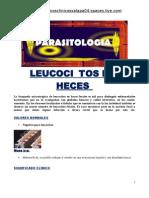 Leucocitos en Heces