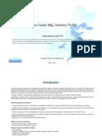 China Gunjet Mfg. Industry Profile Cic3575