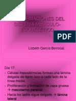 MALFORMACIONES DEL SISTEMA MÚSCULO-ESQUELÉTICO