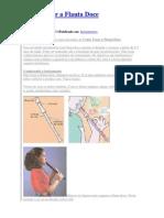 Como Tocar a Flauta Doce
