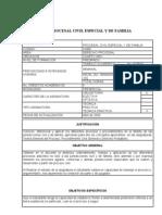 Programa Derecho Procesal Civil Especial y de Familia 2010