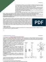 Fisiologia 4 - La Comunicazione Nervosa