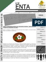 gaceta_empleo_opea_0573615