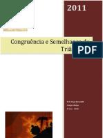 CongruênciaeSemelhançadeTriângulos-1ºAno