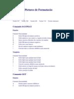 Microsiga - Advpl - Tabela de Pictures de Formatacao