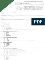 3.Alum Primaria Violencia(Ortega DelRio-2001)5p