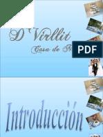 D VIRLLIT