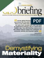 CEO DemystifyingMateriality