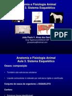 aula3_anatomiaefisiologiaanimal