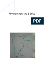 Revision New Sky 3 2012