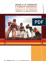 Derecho a la Consulta de los pueblos indígenas