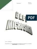 Microsiga SigaAuto Integracao
