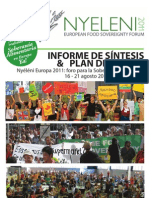 ES - Nyeleni11 Synthesis