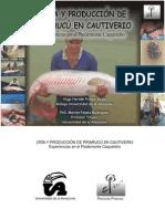 Manual Pirarucu (1)