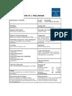 64033 Informe Preliminar