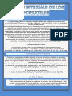 PARTES_INTERNAS_DE_LOS_PORTATILES[1]