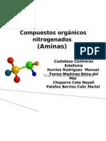 quimica organica. aminas!