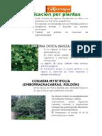 INTOXICACION POR PLANTAS Y REPTILES