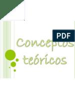 CONCEPTOS TEORICOS