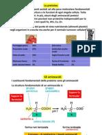 06. Proteine_2011_2012
