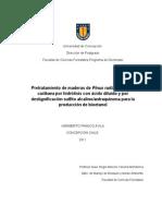 Pretratamiento de maderas de Pinus radiata y Pinus caribaea por hidrólisis con ácido diluido y por deslignificación sulfito alcalino/antraquinona para la producción de bioetanol-Tesis Dr. Heriberto Franco Ávila