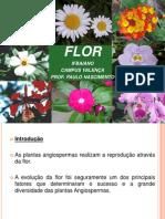 aula_flor