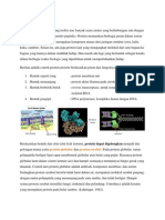 Struktur Dan Penggolongan Protein, Makalah