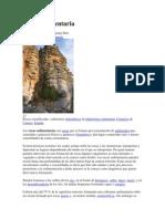 Roca sedimentaria