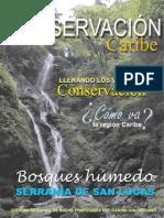 RevistaSirap2010