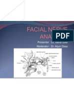 19. Facial Nerve Anatomy and Its Disorders