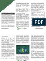 nutricion y salud en los peces de acuario