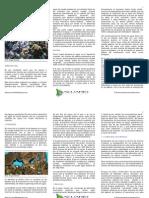 quimica del agua acuariofilia marina