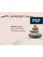1 GPRS_GRX Overview