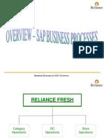 Business Process SAP[1]
