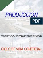 Produccion - Ciclo de Vida