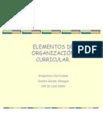 ELEMNTOS DE ORGANIZACIÓN CURRICULAR
