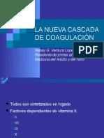 casacadadecoagulacionfinal2003-100203194423-phpapp02