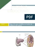 Histofisiologia Del Pancreas