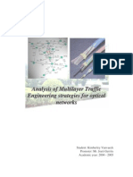 Analysis of Multi Layer Traffic Engineering Strategies for Optical Networks