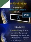 36748546 Spinal Cord Injury