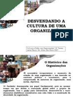 AULA 2 - Desvendando a  Cultura de Uma Organização